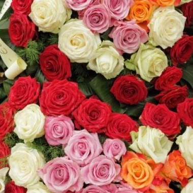 A Dozen roses from Murphy Funeral Directors